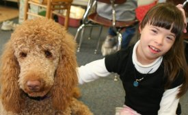dogs info for a kids writing assistant